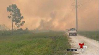 Fuego forestal en Brevard