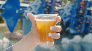 SeaWorld ofrece cerveza gratis para sus visitantes